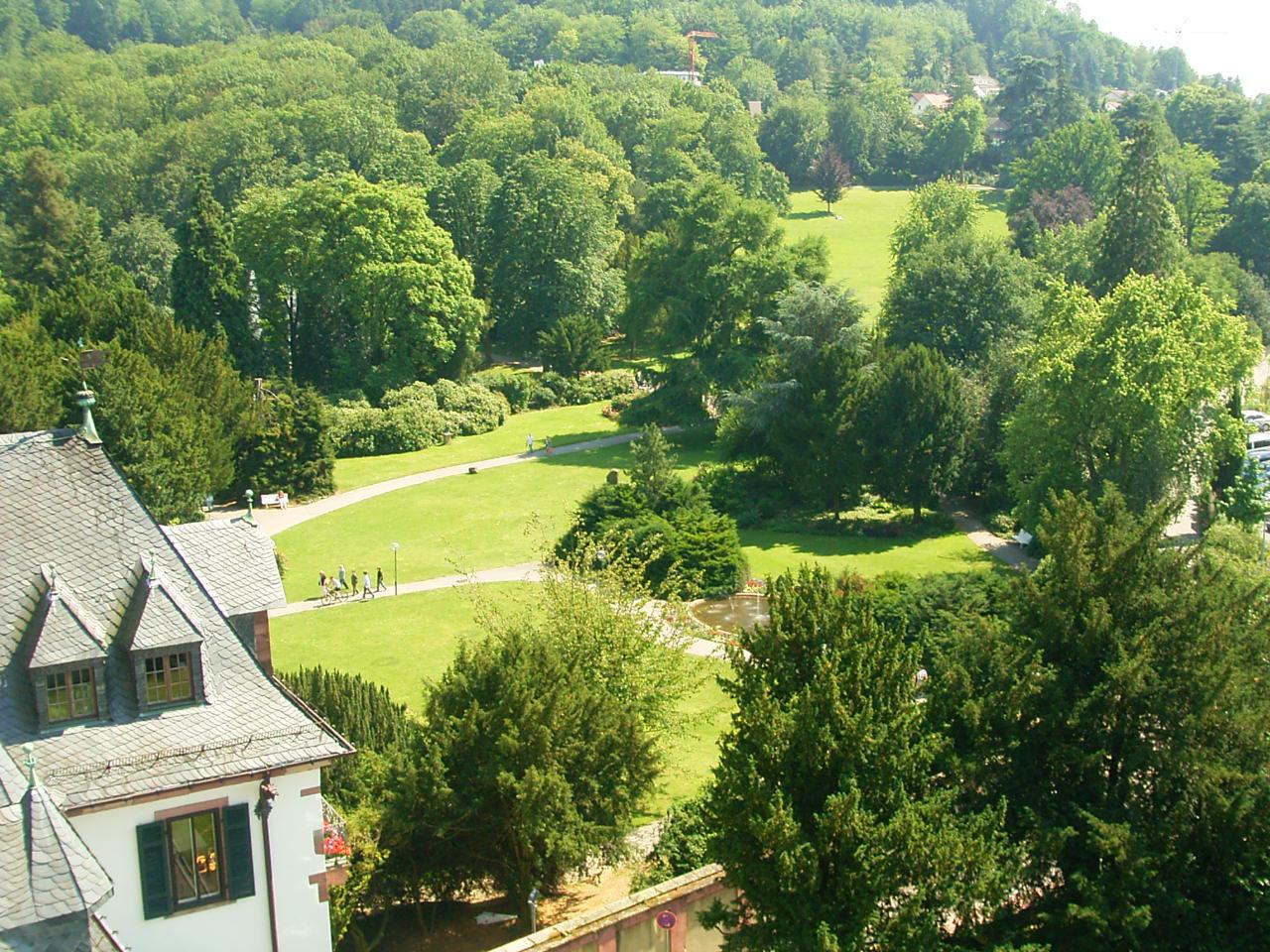 Schlosspark von oben