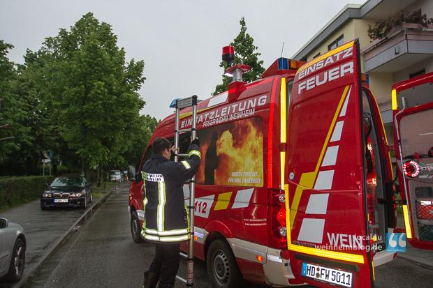 31_05_2013_Feuer_Weinheim_1013